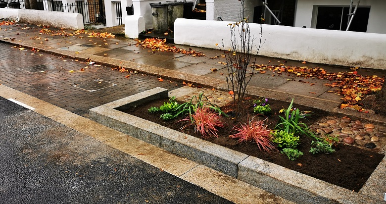 Permeable block paving and shrubs in a rain garden on a roadside