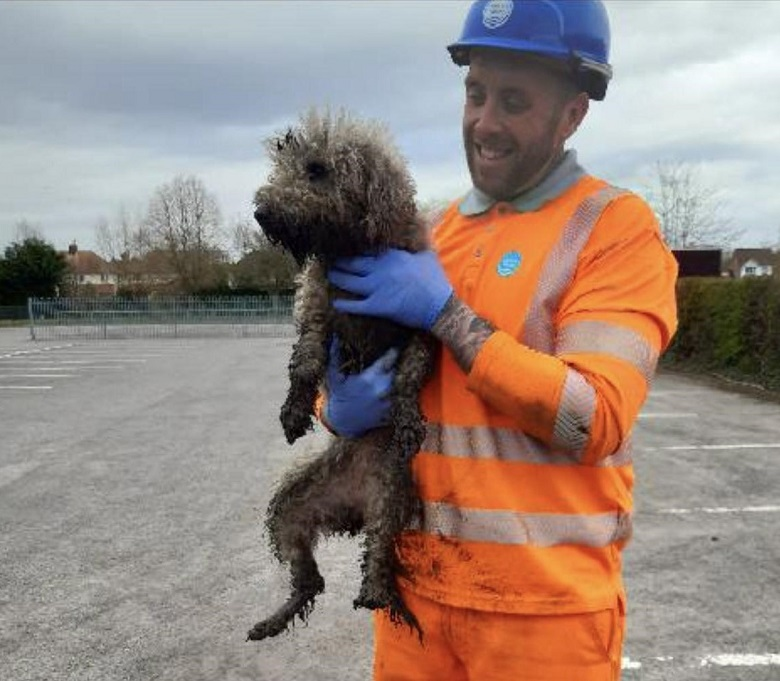 Engineer James Lewis holding the rescued dog