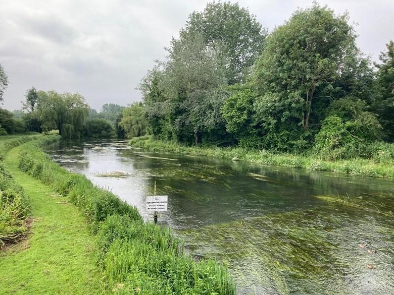 Thames Water has fast-tracked the process for reporting a pollution as part of its commitment to keeping rivers clean and healthy