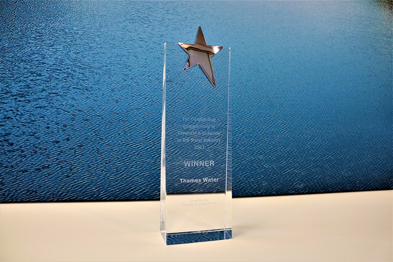 Thames Water received the 'Outstanding Commitment to Diversity & Inclusion in the Water Industry 2021' at the Institute of Water's annual conference.