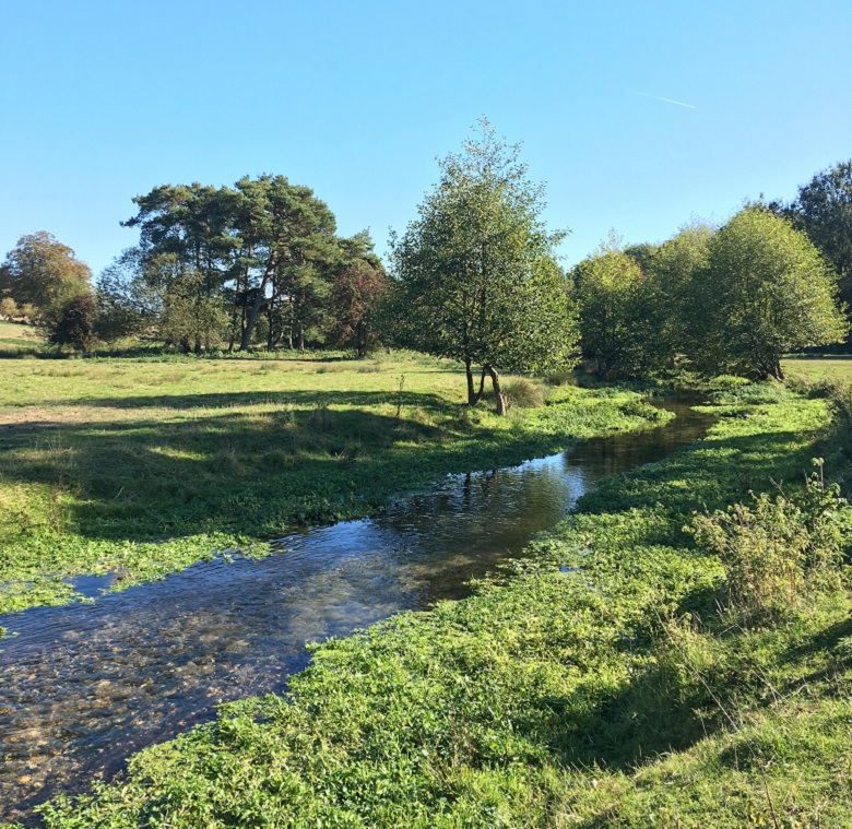 Picture of the River Chess surrounded by green trees