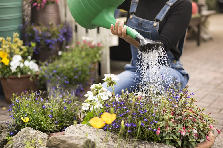 A person kneeling to water flowers with a watering can
