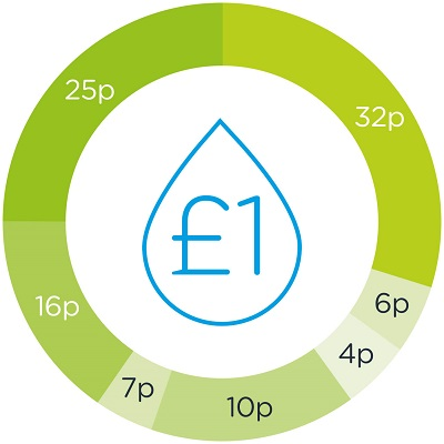 A diagram illustrating how each pound we spend is made up.