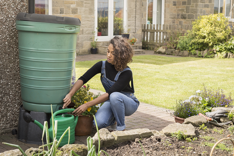 A person filling a watering can from a water butt in the garden.