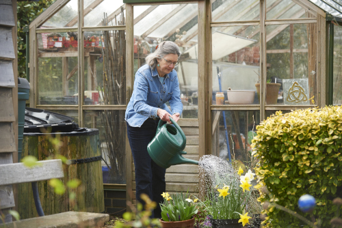 A woman watering yellow flowers outside a greenhouse